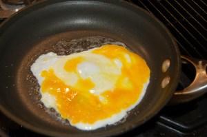 Egg yolk from our chicken egg
