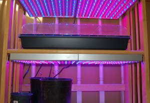 Blue and red LCD grow light panels and heat mats