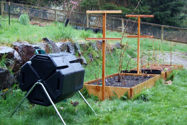 Raspberry beds and composter