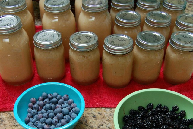 Applesauce, blueberries, and blackberries