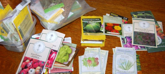Seed packettes