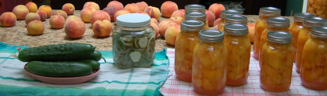 Peaches, cukes, and pickles