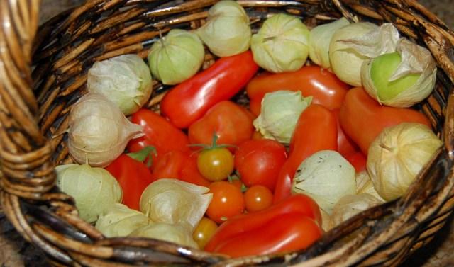 Tomatoes & tomatillos