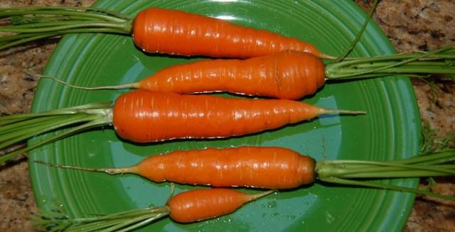 St. Valery carrots