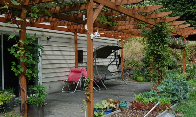 Our south-facing patio