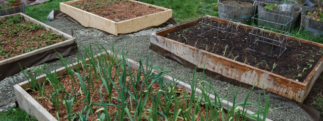 Mole-proofed beds with new paths