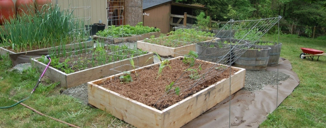 Outdoor raised bed garden