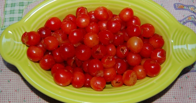 Montmorency pie cherries