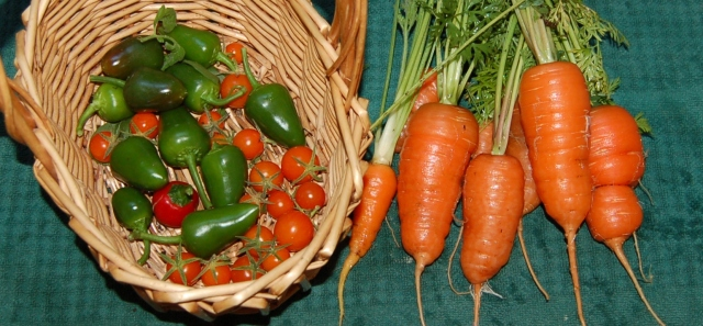 Tomatoes, peppers, and carrots